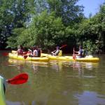 Descente du Loir en canoë